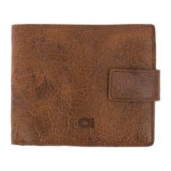 Pánská kožená peněženka Jazzy wanted DAAG hnědá
